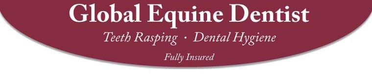 Global Equine Dentist: Teeth Rasping - Dental Hygiene - Fully Insured